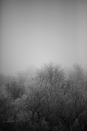 grand blanc 01